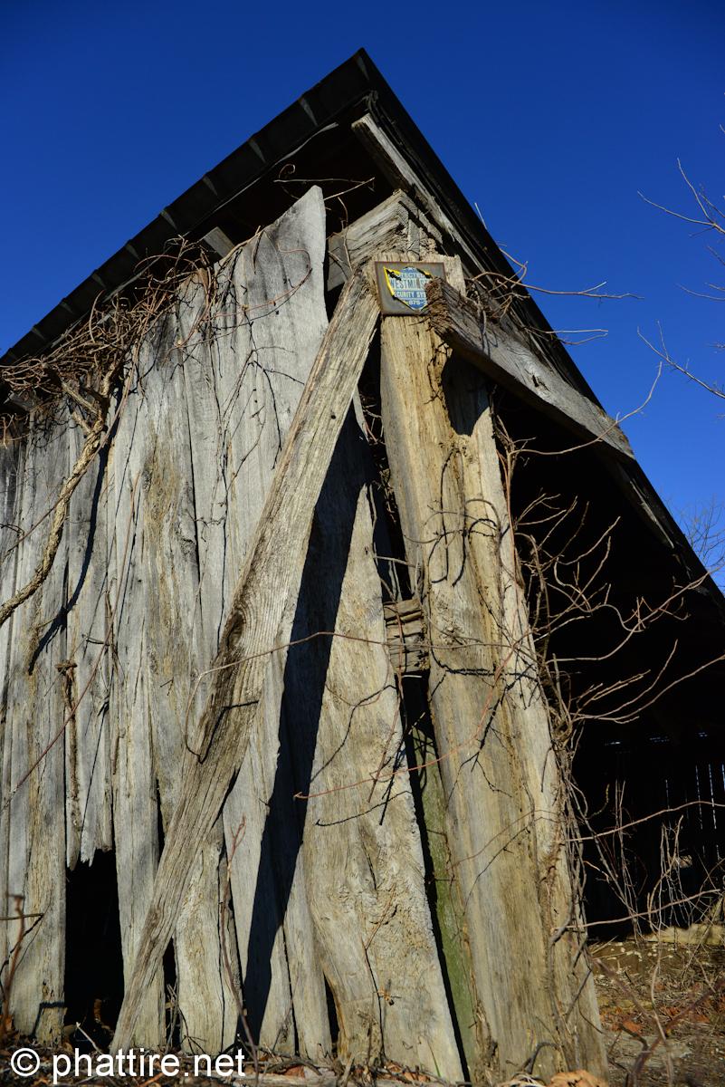 phattire net suburban decay