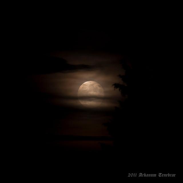mystische Vollmond Nacht