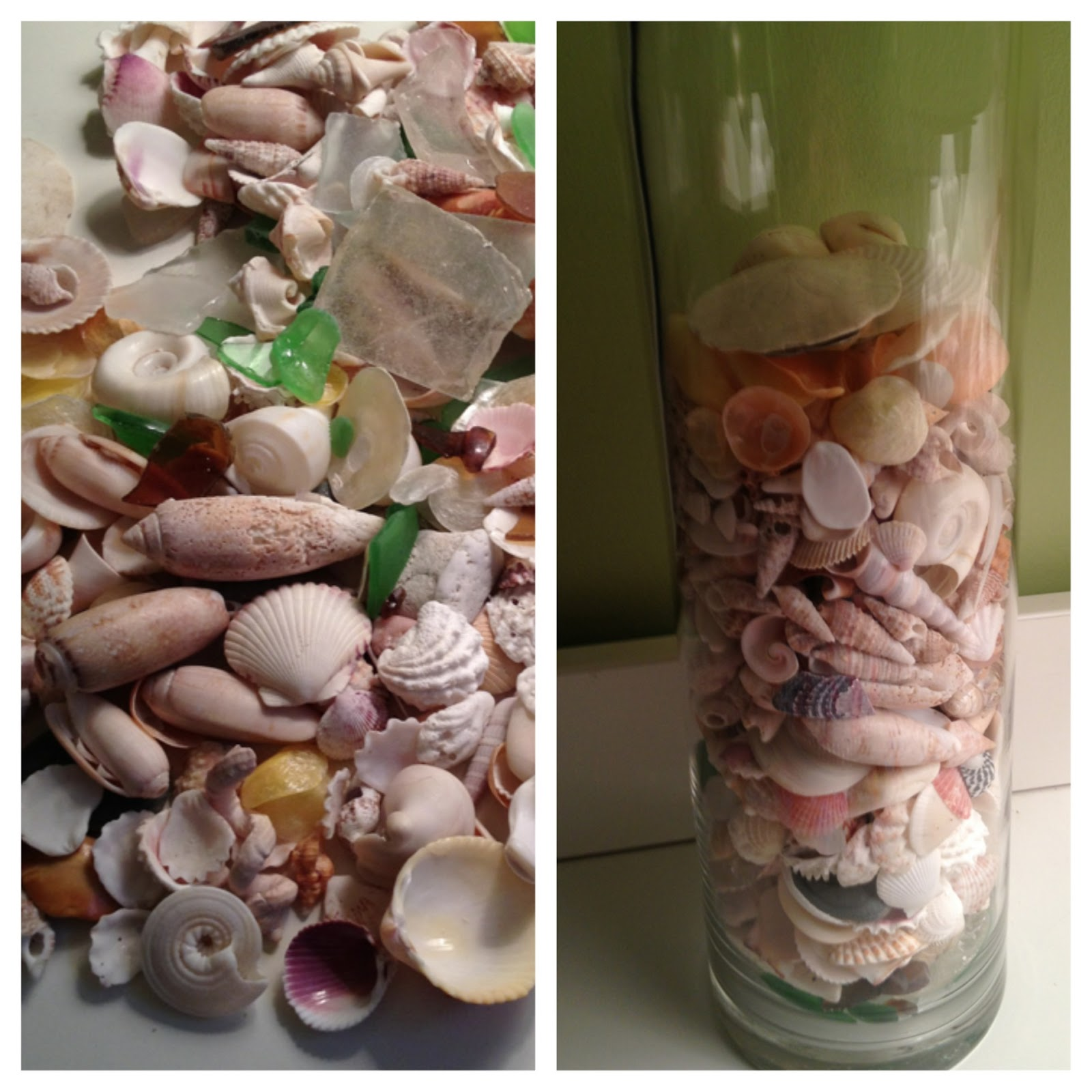 Diy seashell vase reviewsmspy