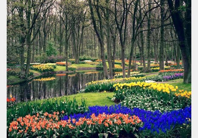 أجمل 10 حدائق فى العالم .. 68221-1362400153.jpg
