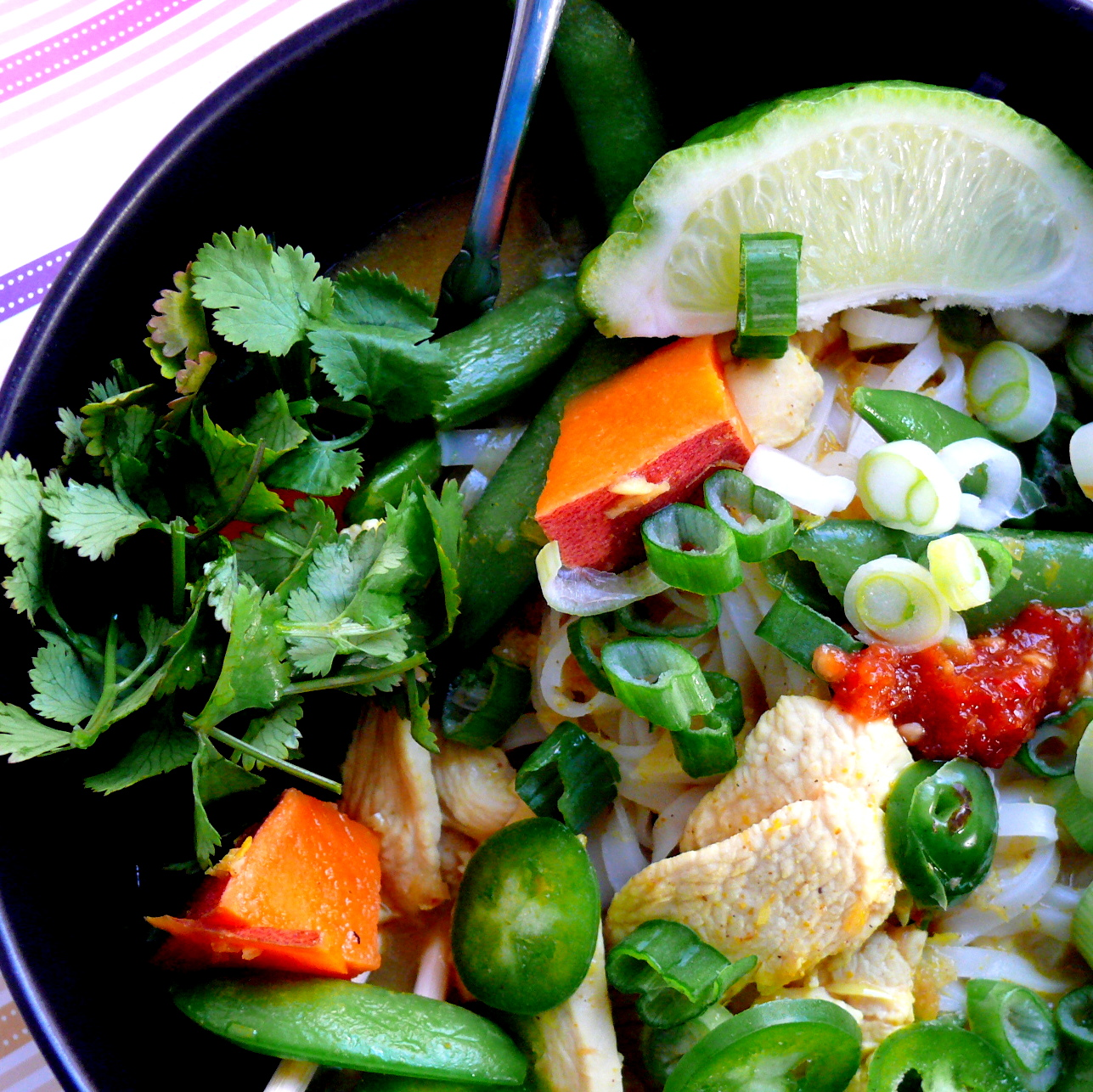 ... Little Pleasures: Spicy Thai Curry Soup with Chicken and Sweet Potato