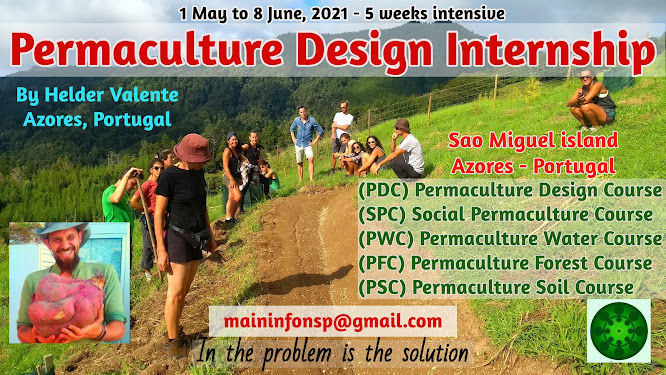 Permaculture Design Internship 2021