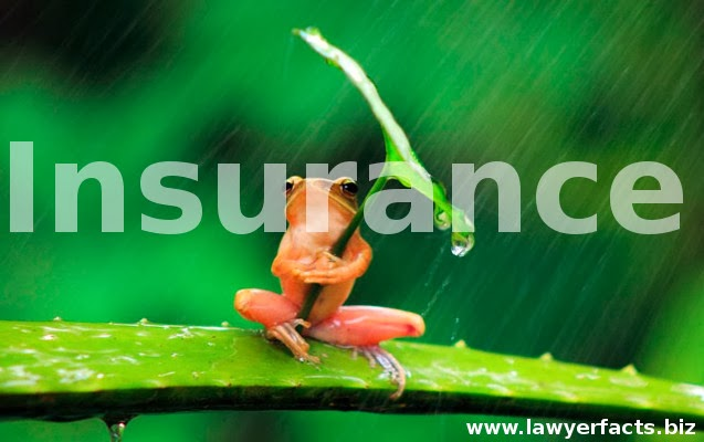 Insurance,basic, terms, definitions, coverage