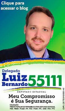 DELEGADO LUIZ BERNARDO