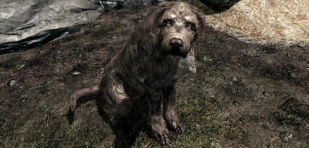 Skyrim Buying a Dog Tip