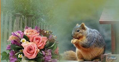 http://www.chezjoeline.com/app/download/10083680895/Jolies+fleurs+..+09+07+2015.pps?t=1436374313