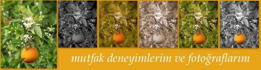 Portakalvecicek.blogspot.com.tr