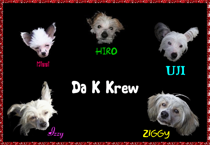 Kresty Krew