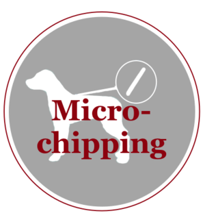 Micro-chipping