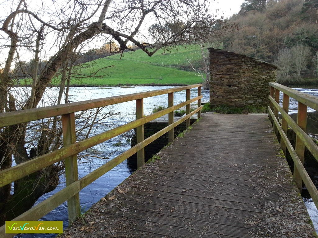 pasarela de madera que leva a caseto de caneiro na Tolda do río Miño