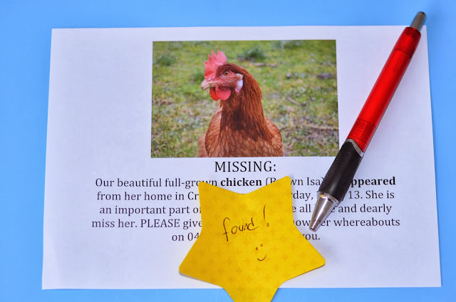 Lost chicken flyer