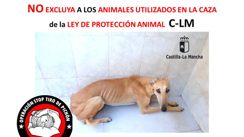 Castilla-La Mancha: NO excluya a los perros de caza de la ley de bienestar animal