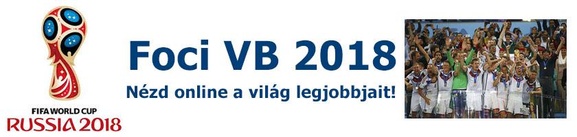 Foci VB 2014 Online