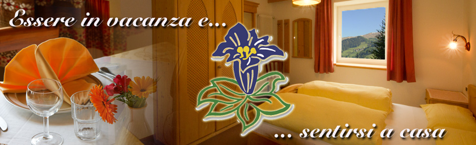HOTEL GENZIANA | DOLOMITI - ARABBA