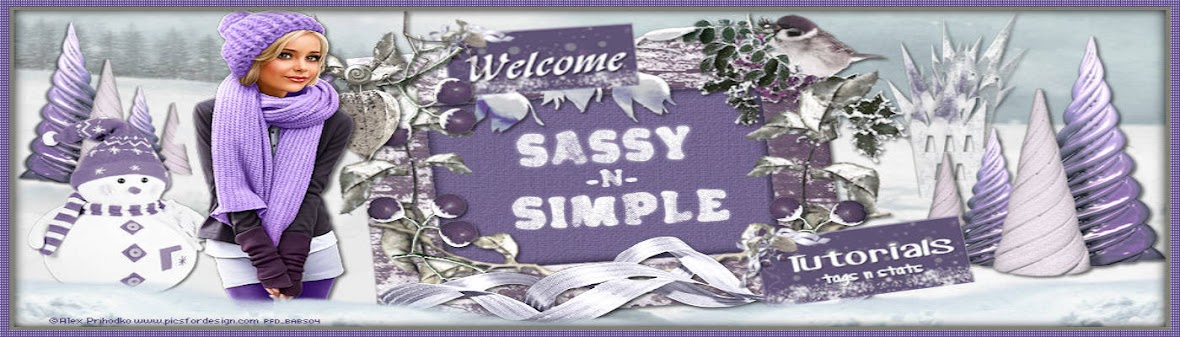 SassynSimple Stationary