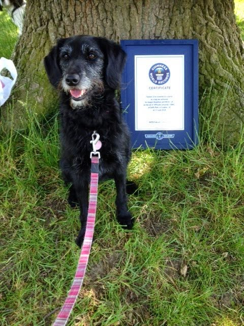 Millie's a Guinness World Record holder!