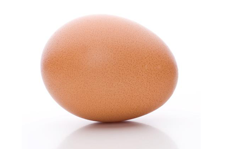 Esperma se encuentra con huevo: proteína esencial