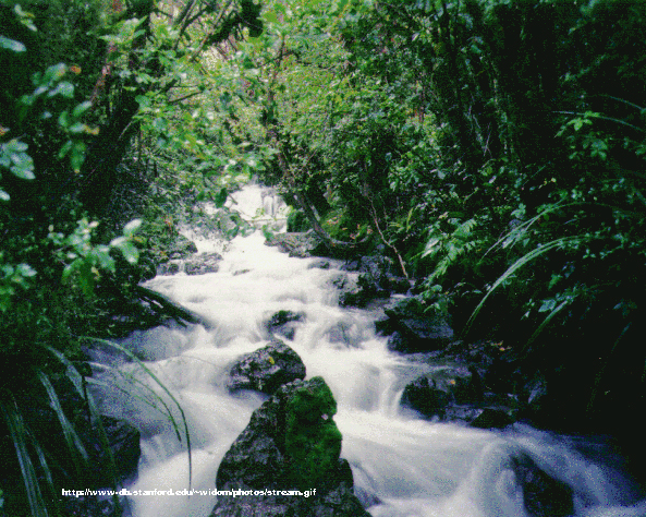 Pictures of the Freshwater - Biomes of the World