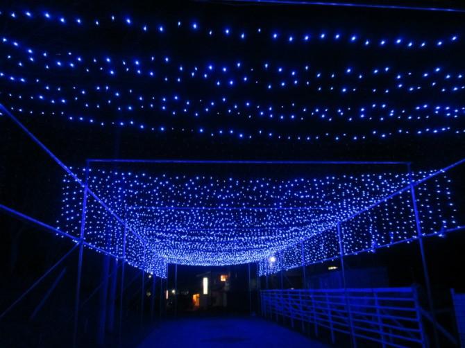 Oirase Illuminations in Yakeyama 2015-16 奥入瀬イルミネーションイン焼山 平成27年度