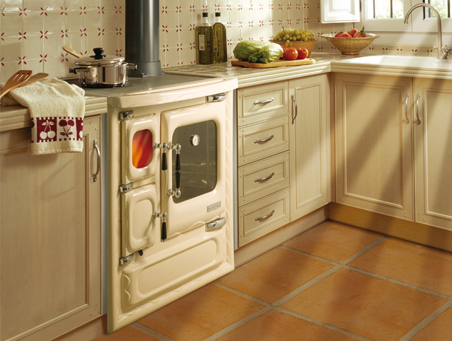 Tecnolog a para un progreso sostenible calentar la casa - Cocinar en la chimenea ...