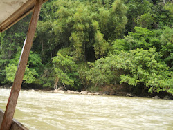 view of Sungai Tembeling