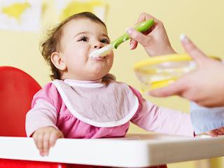 makanan sehat bayi