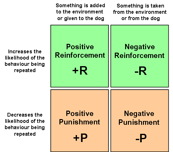punishment and reinforcement Reinforcement, positive punishment, and negative punishment below are some definitions of these types of operant conditioning posstive reinforcement definition.