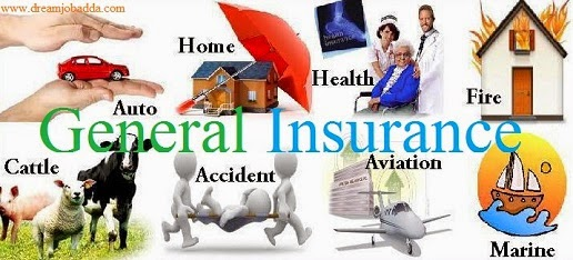 Information on General and Life Insurance in India Brief Notes ...
