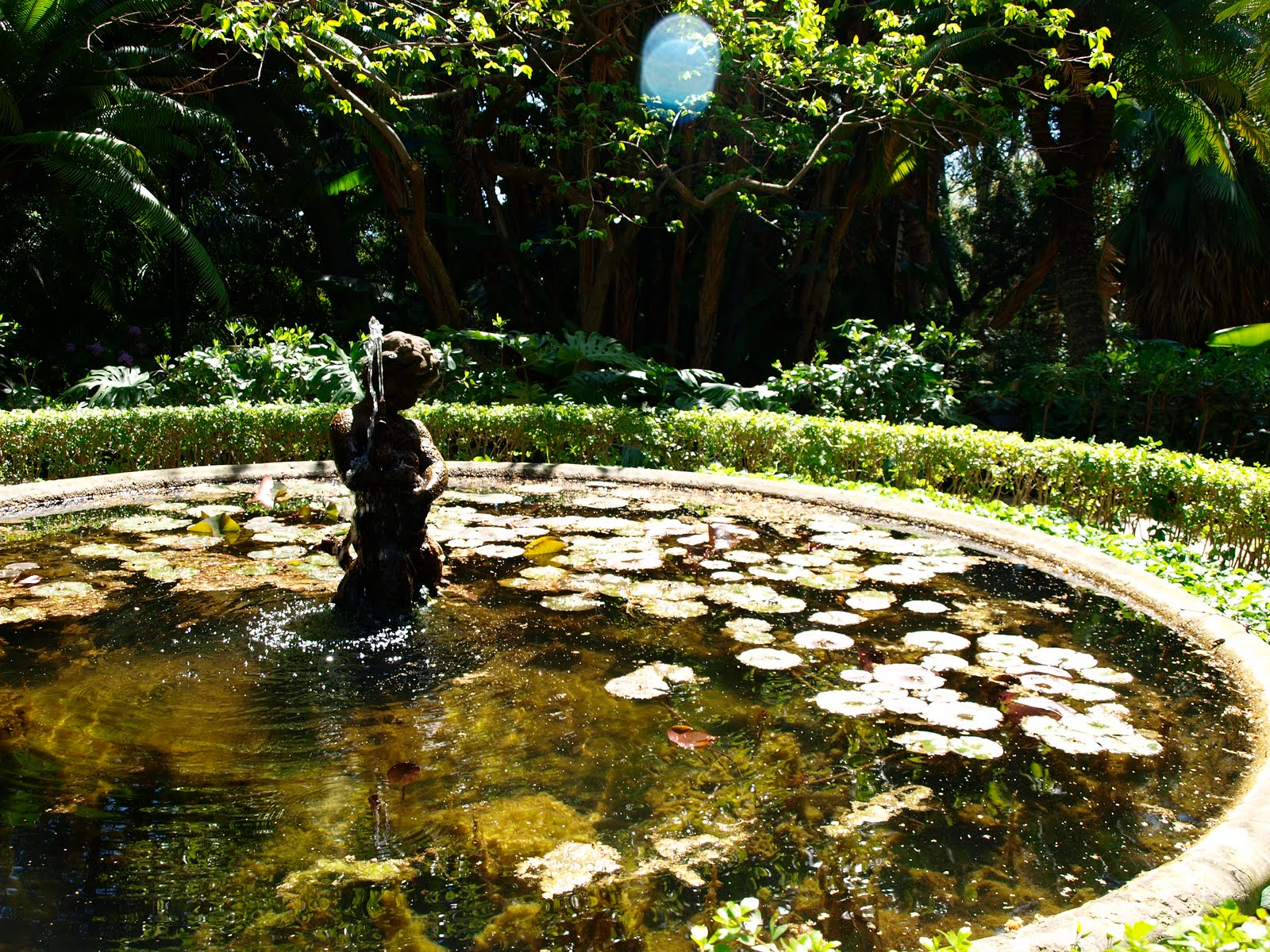 De escenarios m gicos adios fr o hola primavera for Jardin botanico tarifas