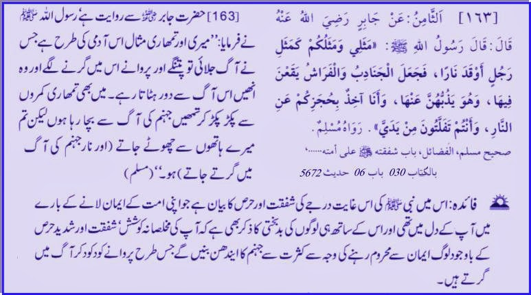 Daily Aayat, daily hadith, Daily Quran, Daily Quran And Hadith, Islamic, Islam, Islamic Content,