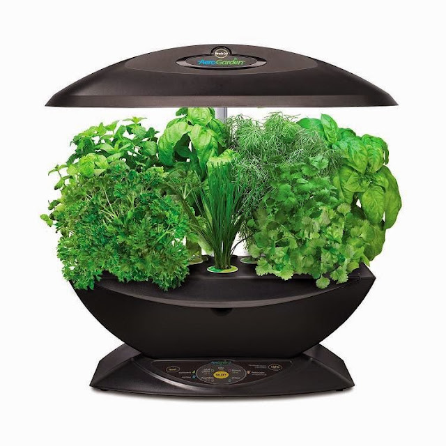 Best Ways To Grow Herbs Indoors - AeroGarden