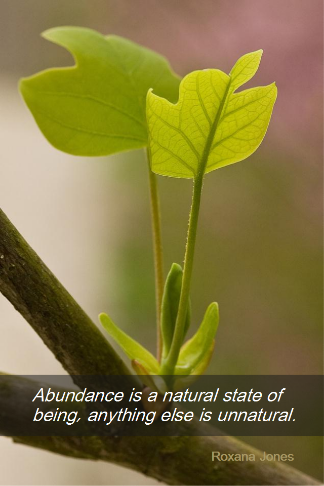 visual quote - image quotation for ABUNDANCE - Abundance is a natural state of being, anything else is unnatural. - Roxanna Jones