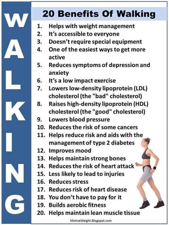 Benefits Of Walking Your Dog Daily