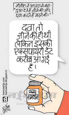 bjp cartoon, JDU Cartoon, nda, election 2014 cartoons, indian political cartoon, nitish kumar cartoon