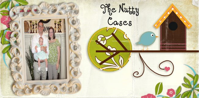 The Nutty Cases