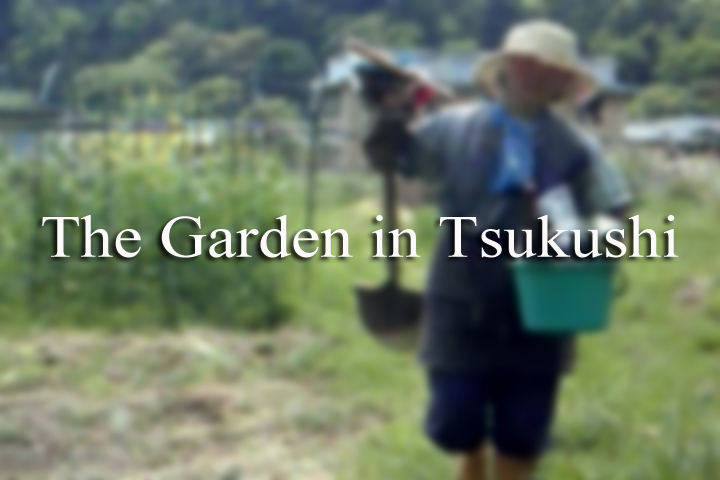 The Garden in Tsukushi