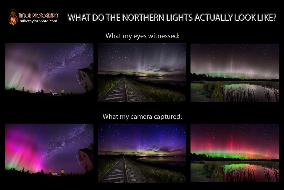 Into the night photography what do the northern lights for What color do you like