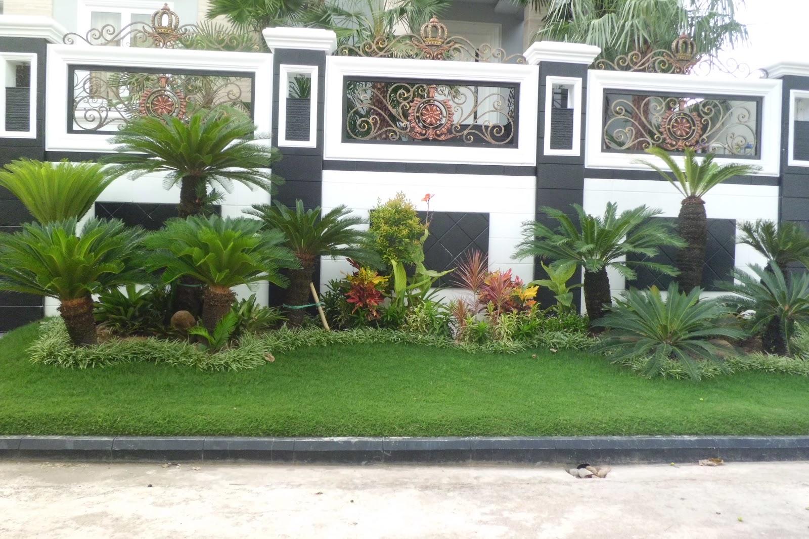 solusi memilih tanaman untuk halaman taman anda