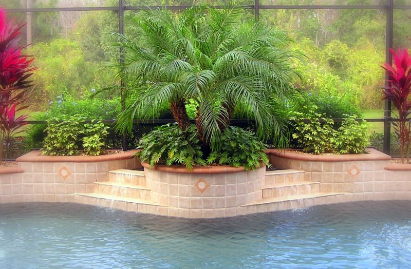 Photos luxurious swimming pools 2012 swimming pool design for Swimming pool landscape