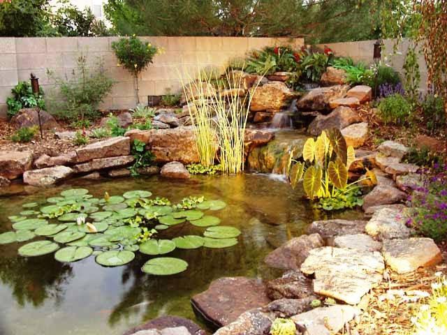Crea tu jard n c mo decorar un estanque - Como decorar un estanque ...