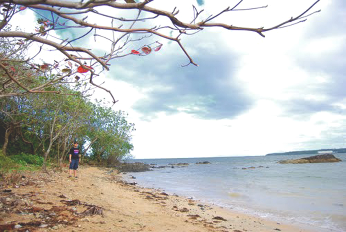 a walk in the beach essay Your complete guide for the best beaches in mauritius  it is very nice to walk from the beach along the coast until reaching the center of grand bay.