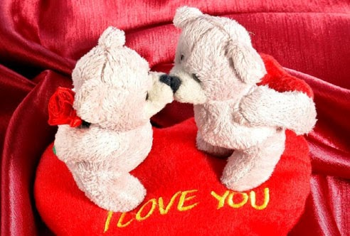 Rose Day 2014 Sms Wishes Messages Quotes Hindi English