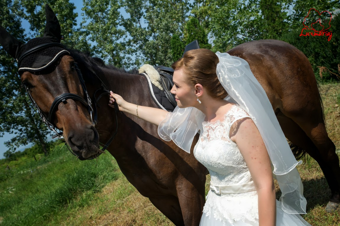 Fotograf nunta Iasi 2