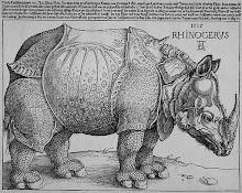 Durero: Rinoceronte