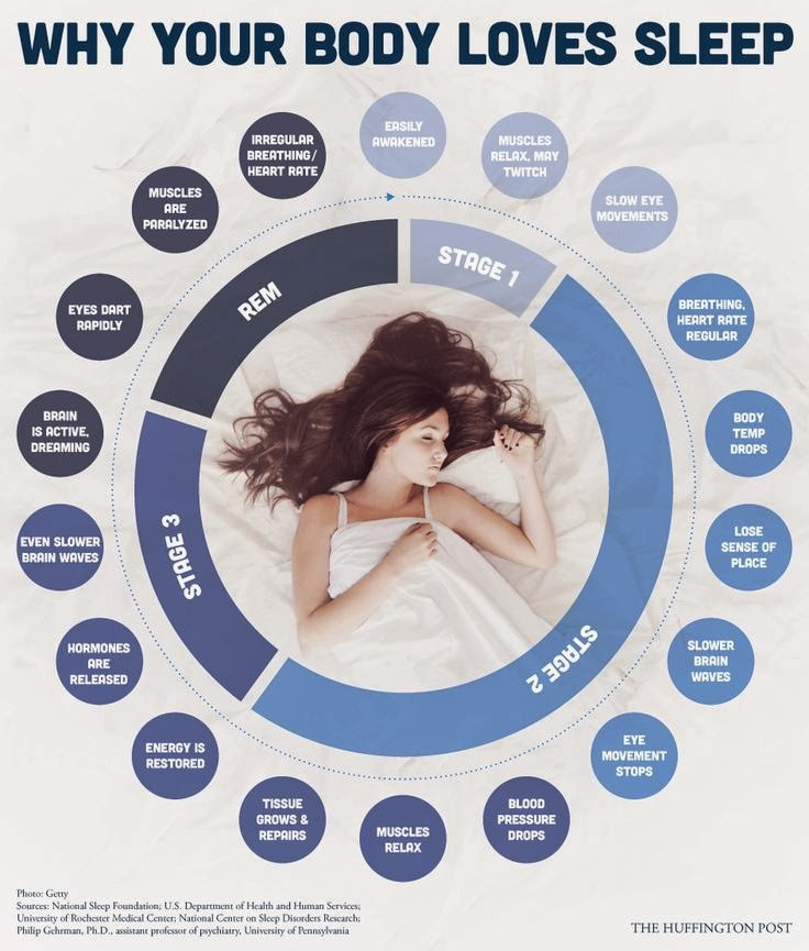 why your body loves sleep!