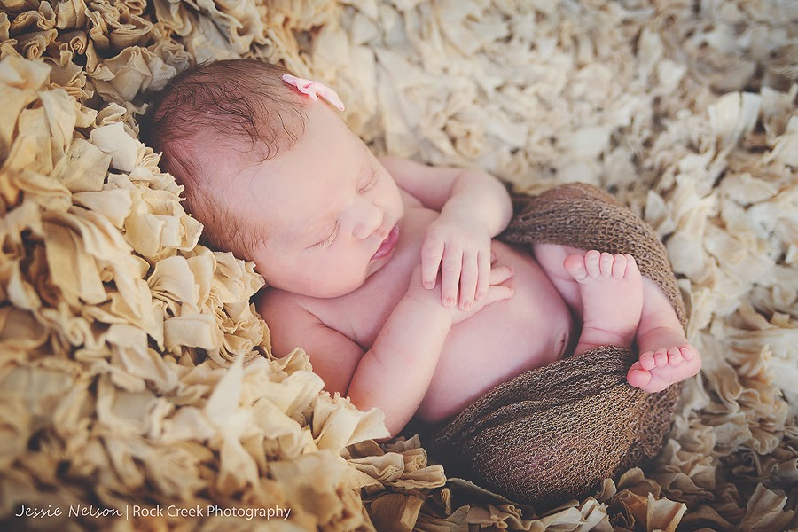 Twin Falls, Rexburg, Idaho newborn photographer