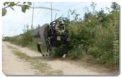 videos de robôs
