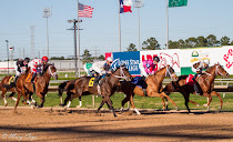 THE LATEST AT PAST THE GRANDSTAND ON HORSE RACING NATION. . .
