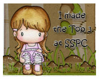 Yay!  Top three at SSPC!