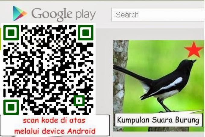 Aplikasi Android Kumpulan Suara Burung